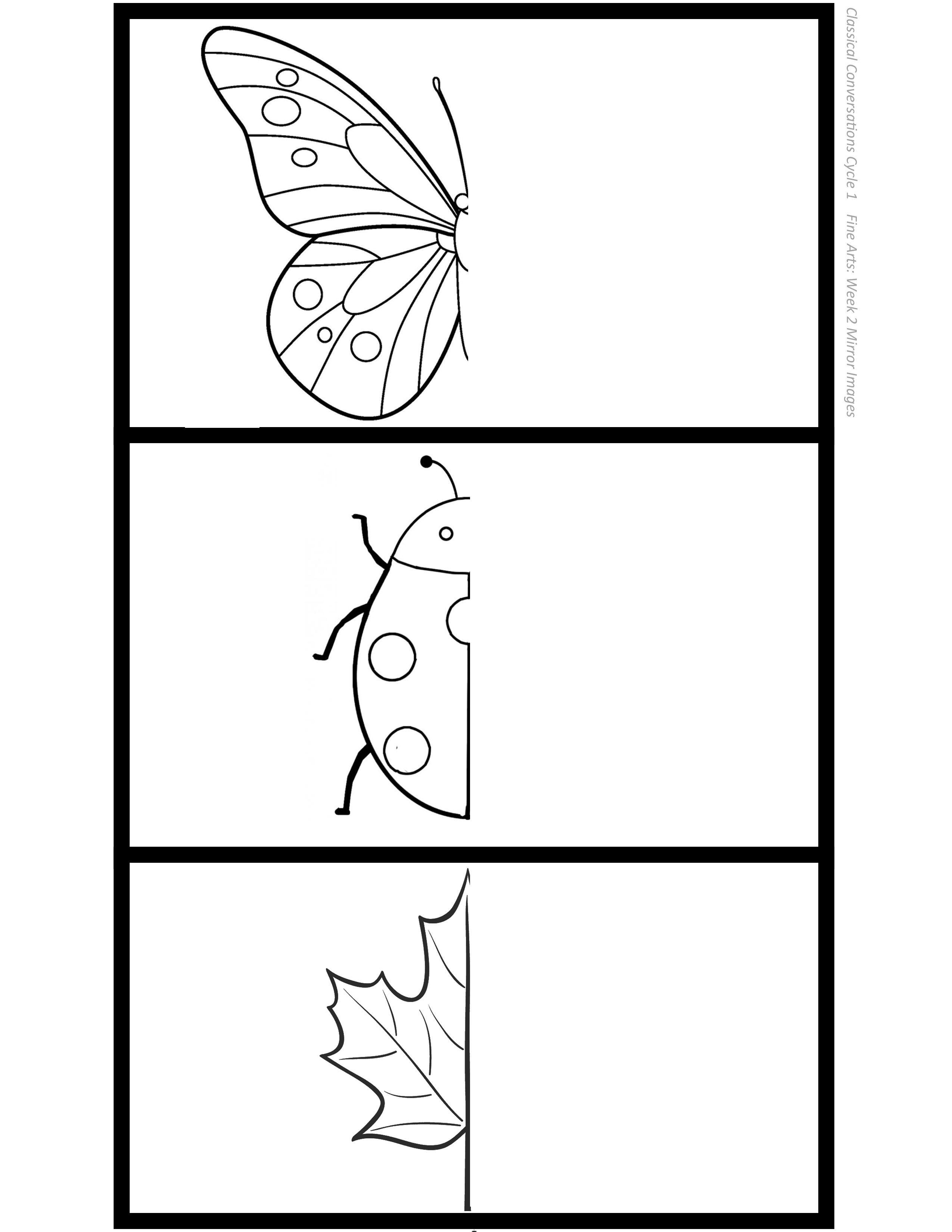 Mirror Image Drawing Printable