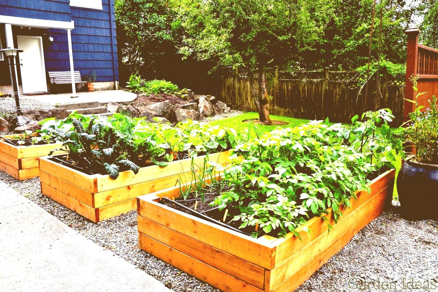 Cool Small Garden Plan 2018