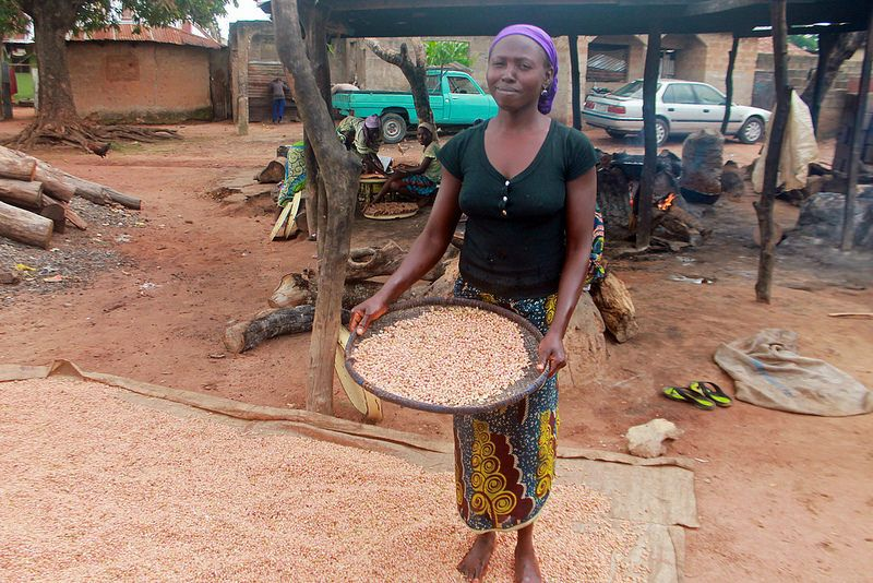 Groundnuts Popular snacks, Company meals, Nutrition bars