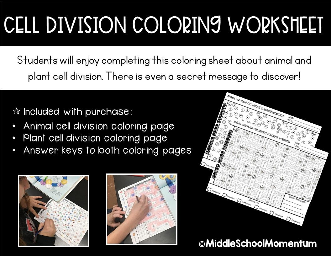 Cell Division Coloring Worksheets