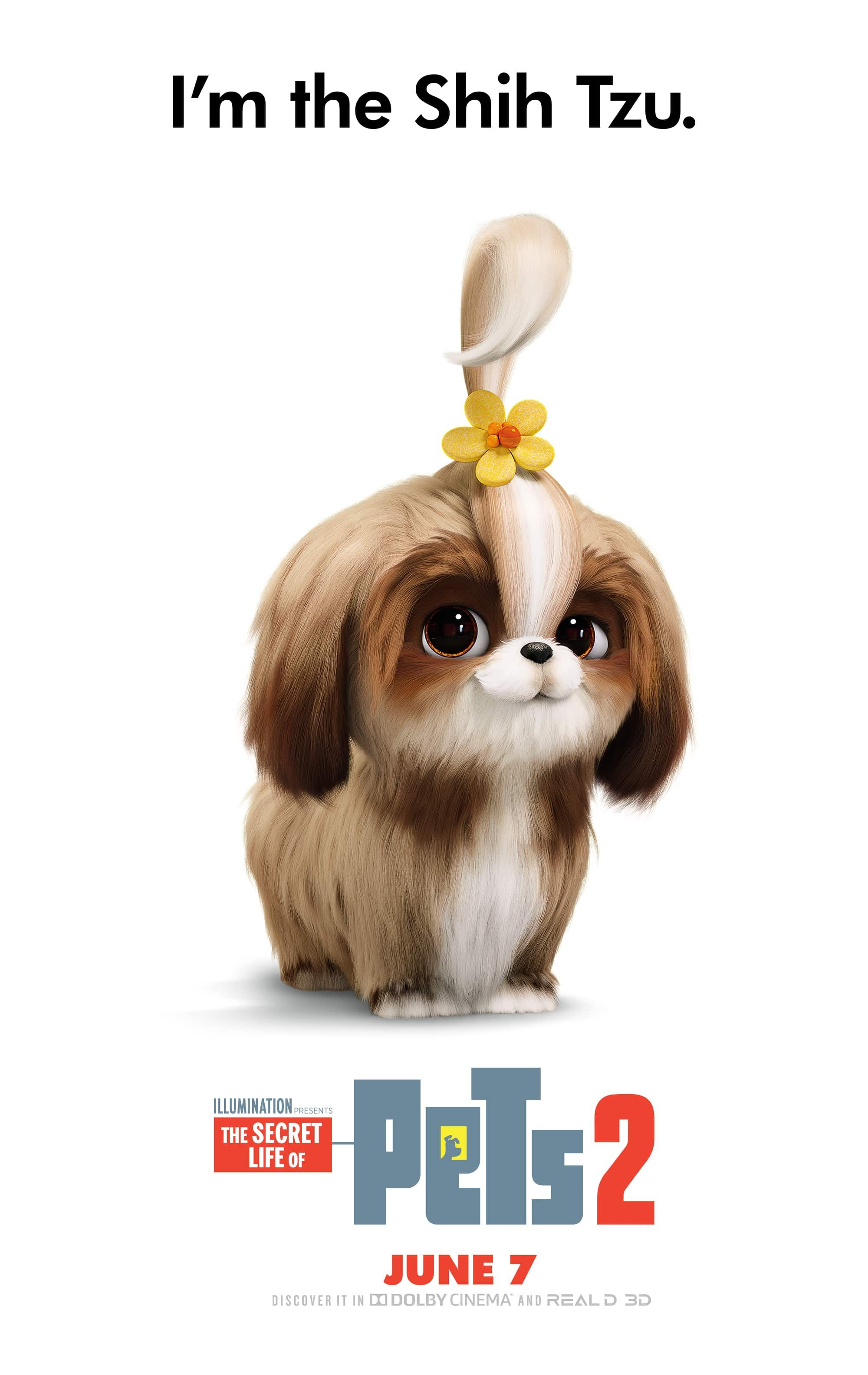 The Secret Life Of Pets 2 Movie Cast Pictures Own It On Digital Now 4k Ultra Hd Blu Ray Dvd August 27 Secret Life Of Pets Pets Secret Life