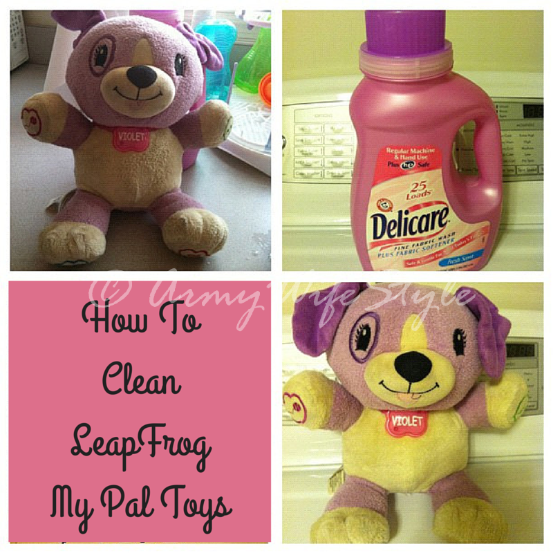 How To Clean My Pal Violetmy Pal Scout How To Clean Everything