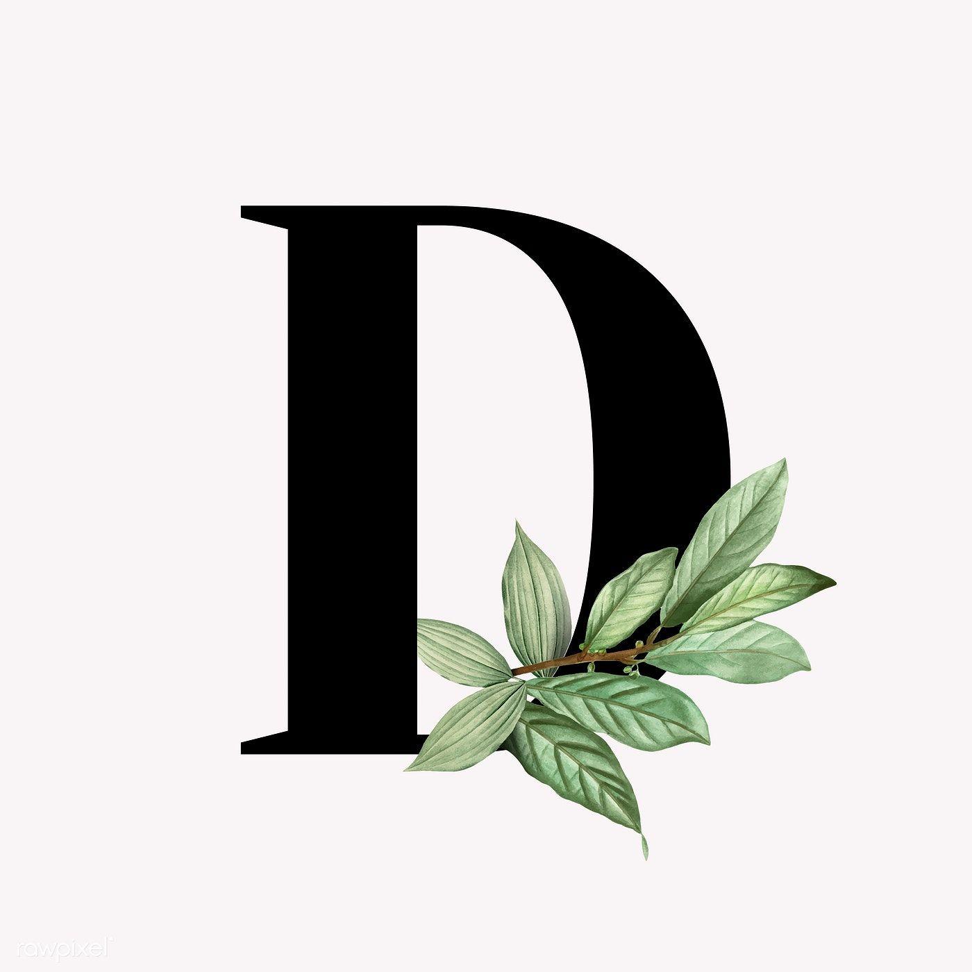 Download Premium Vector Of Botanical Capital Letter D Vector 584985 Lettering Alphabet Fonts D Letter Images Letter D