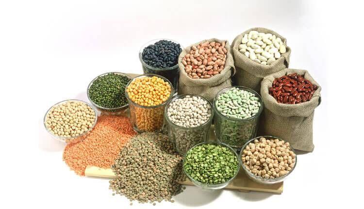 اين يوجد البروتين بكثرة في الطعام أهم 213 مصدر غني بالبروتين Dog Food Recipes Food Animals Food
