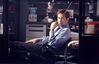 David Duchovny as Agent Fox…