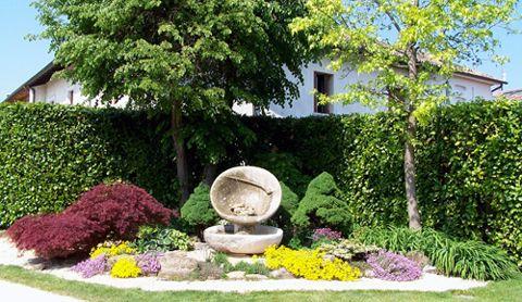 progetto alberi in giardino - Cerca con Google
