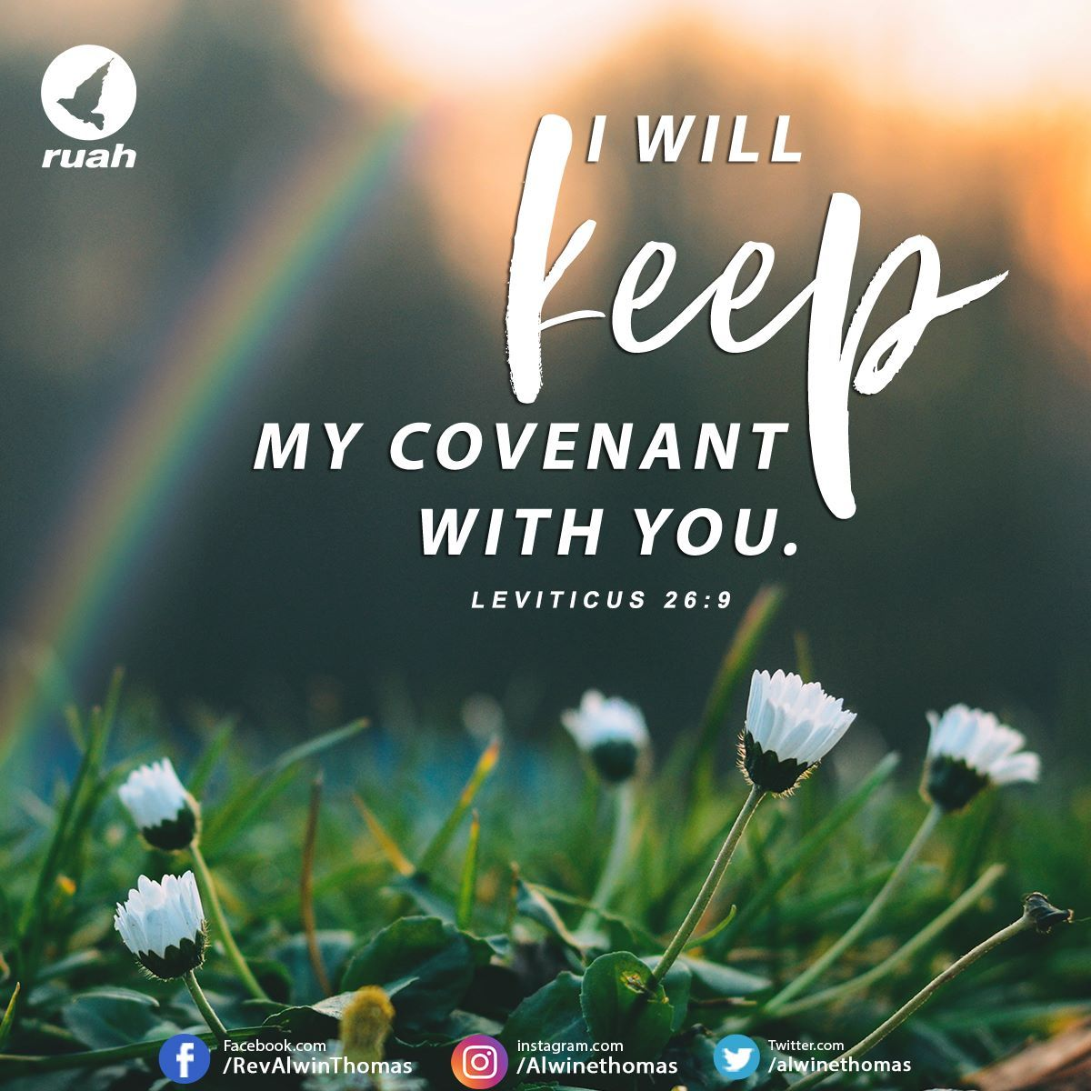 I Will Keep My Covenant With You Leviticus 26 9 Niv