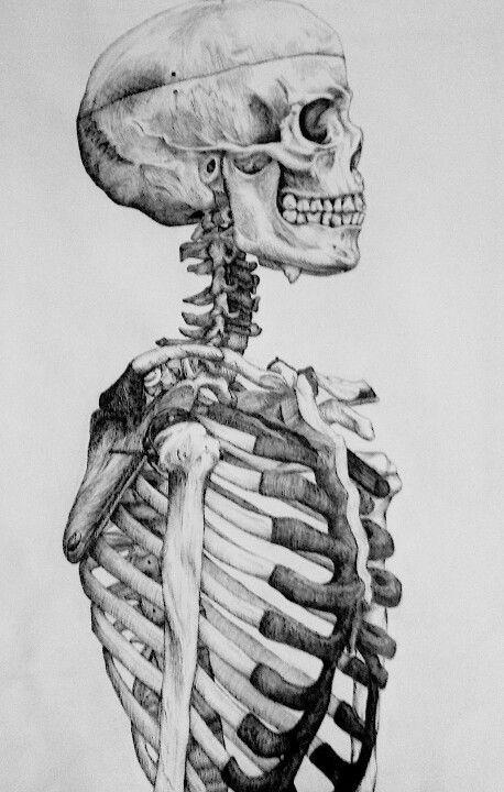 skeleton medium: pencil artist: melissa b | art lesson ideas, Skeleton