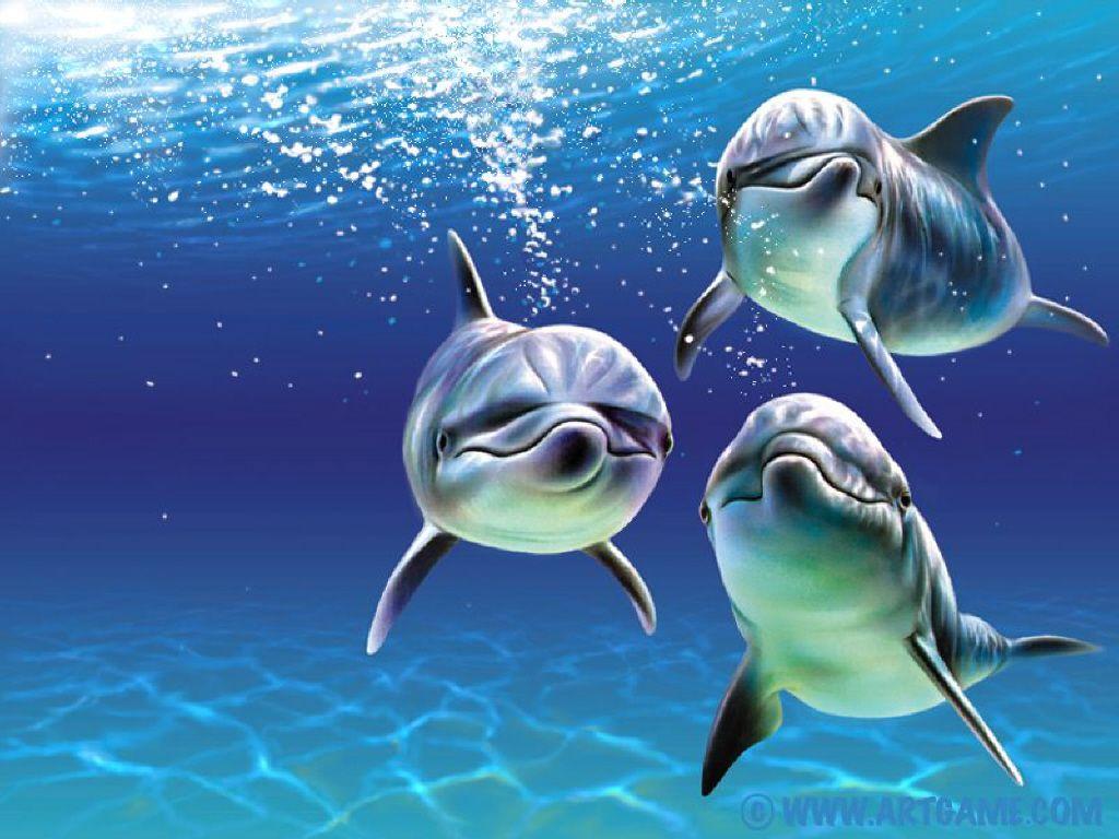 paisajes con delfines - Buscar con Google   Genero Paisaje ...