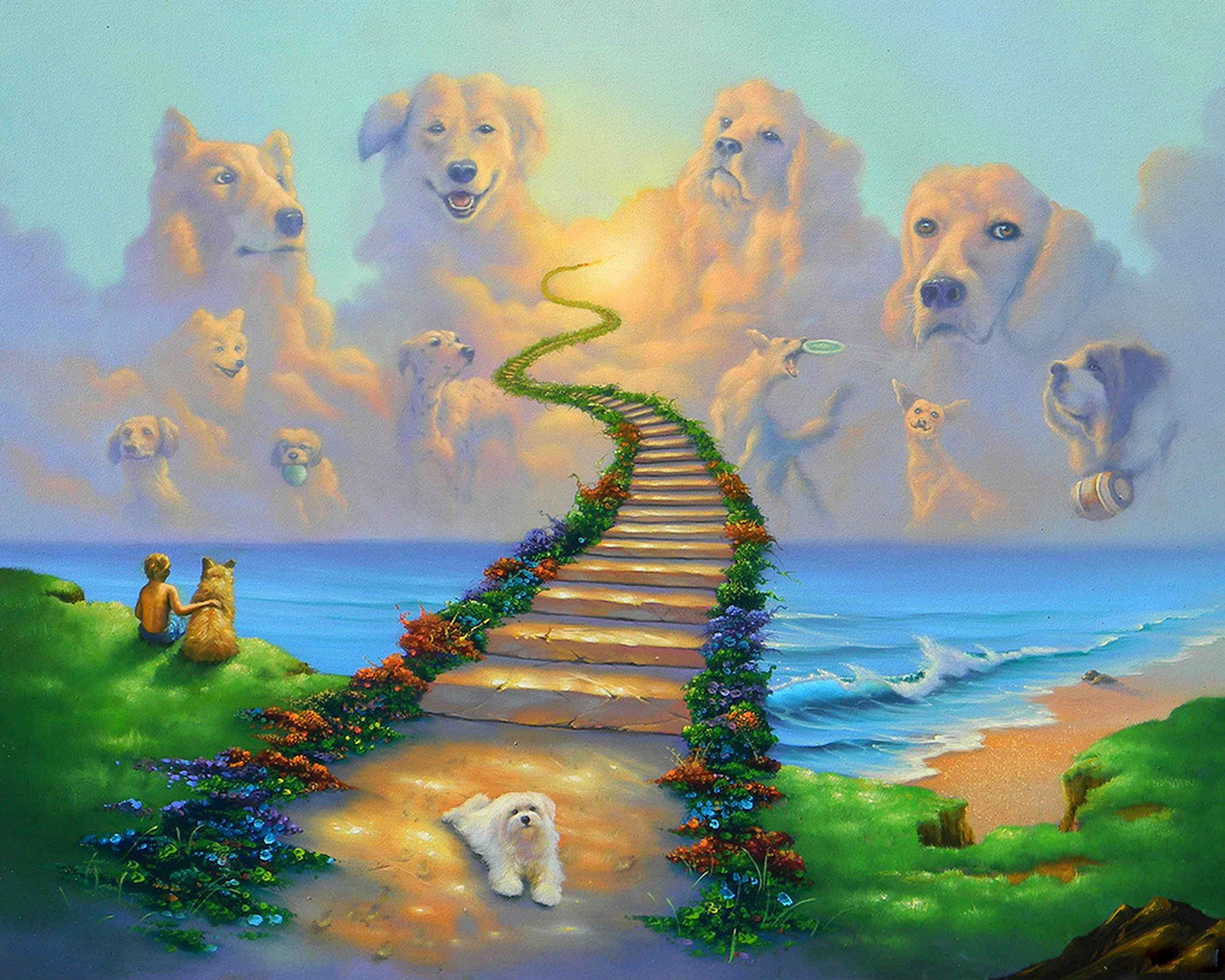 Rainbow Bridge All Dogs Go To Heaven Collie St Bernard 8x10 Art