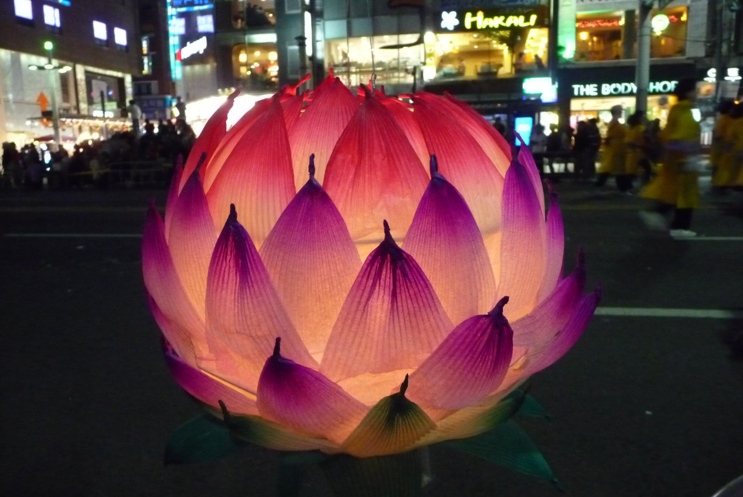 Buy Buddhist Lotus Lanterns Google Search Erin Loves Moments Of