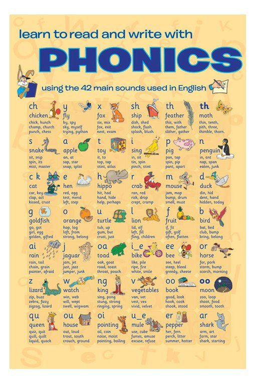 Educational - Phonics Mini Poster 16 X 20In | Phonics, Phonics