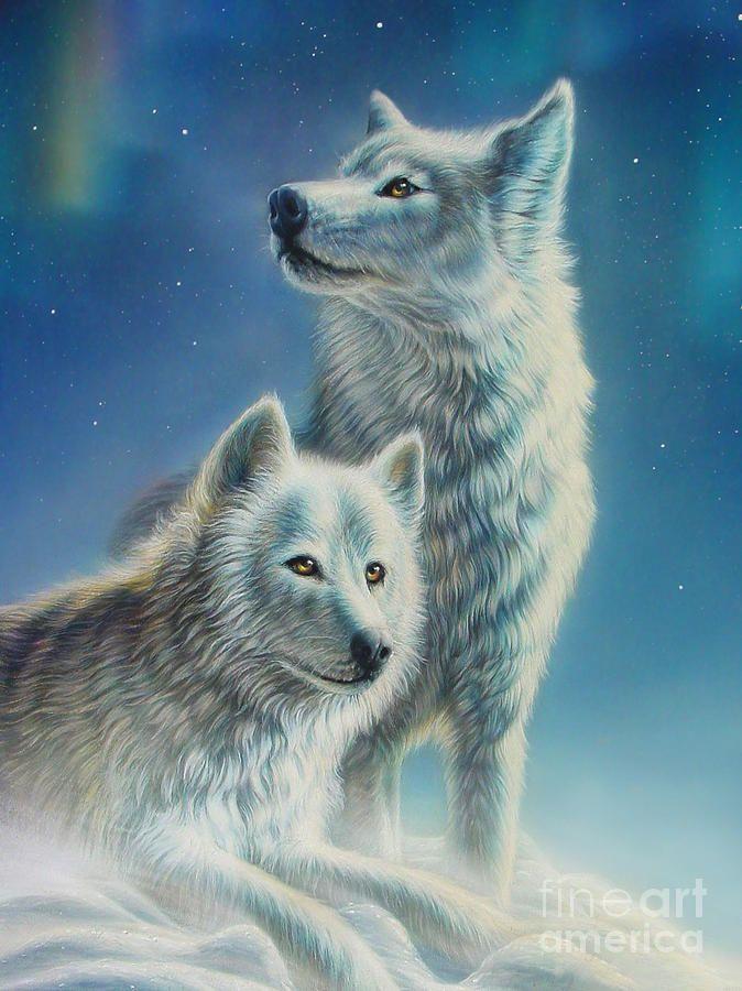 Arctic Wolves by MGL Meiklejohn Graphics Licensing | tek ...