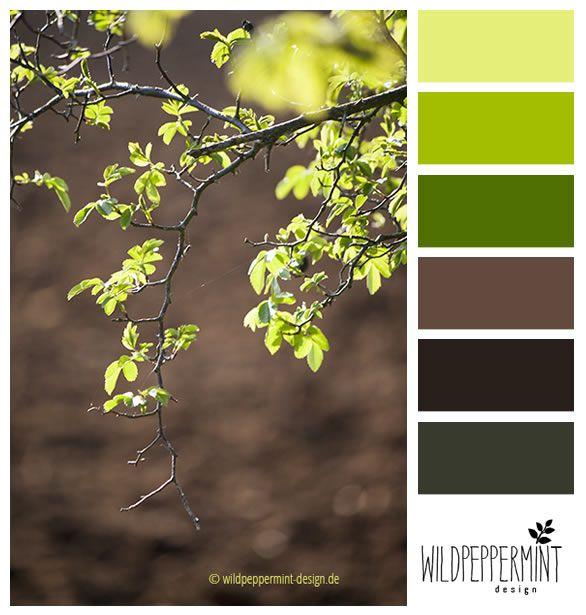 Farbpalette, Farbinspiration, Frühling, Hellgrün, Grün