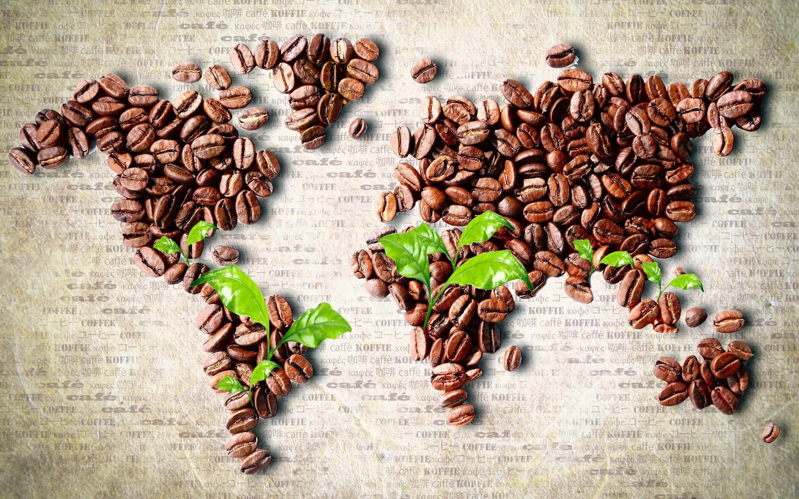 Картинка coffee beans, Листья, кофе в зернах, leaves, карта мира, continents, континенты, world map 2560x1600, фото 85152 | Кофе в зернах, Зерна, Кофе