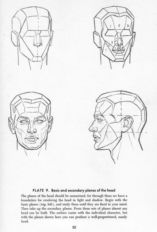 Construction Tte 0 Facehead Reference Pinterest Andrew