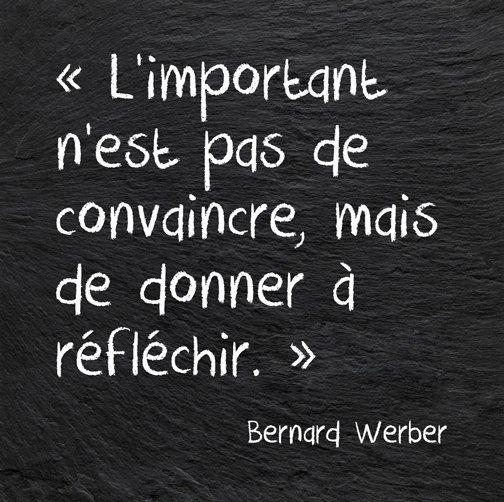 L'important n'est pas de convaincre mais de donner à réfléchir - Bernard Werber