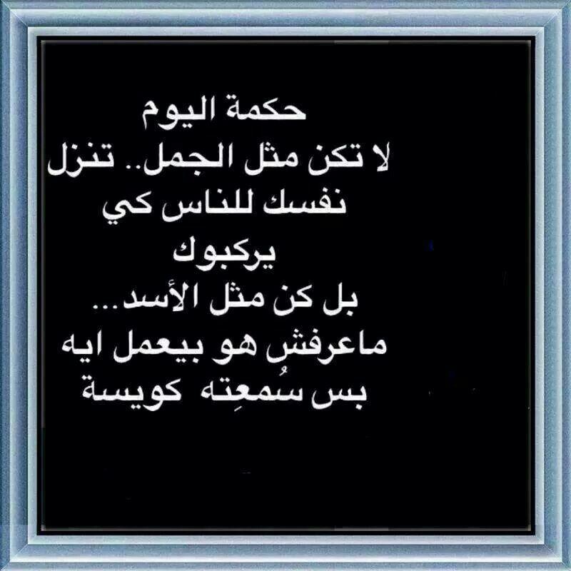 DesertRose... Funny | English wisdom, Quotes, Funny