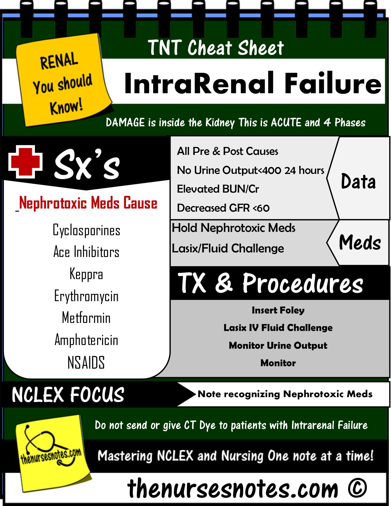 Intra Renal Failure Kidney Renal Nursing Kamp Stickenotes Tbb Png 1 275 1 650 Pixels Nursing Notes Nursing Mnemonics Nurse