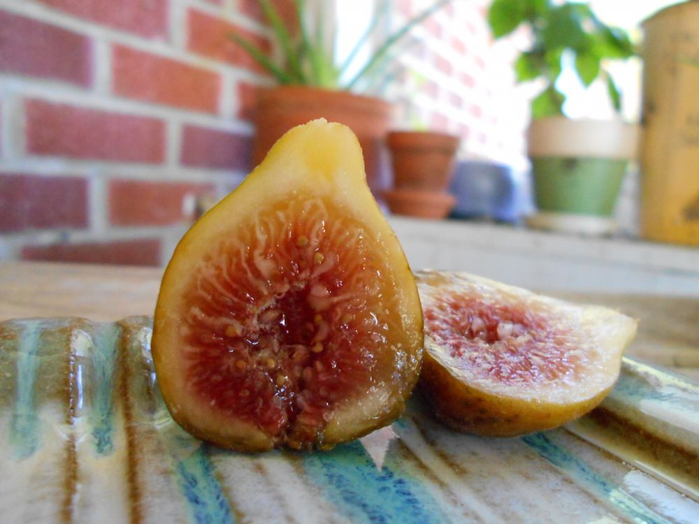 Fig Face Mask For Healthy Skin