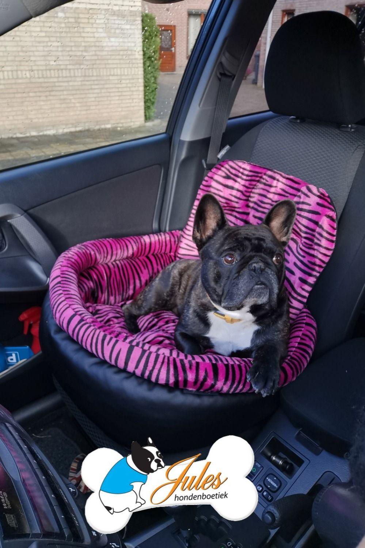 Hondenautostoel Veilig Je Hond In De Auto Vervoeren Auto Honden Autostoel