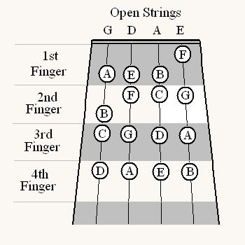 First Position Fingerings Of The Natural Notes On The Violin