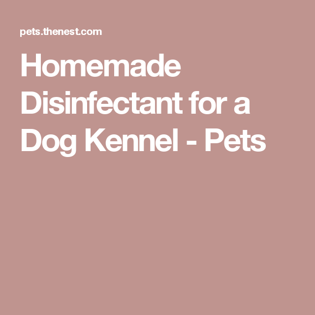 Homemade Disinfectant for a Dog Kennel - Pets