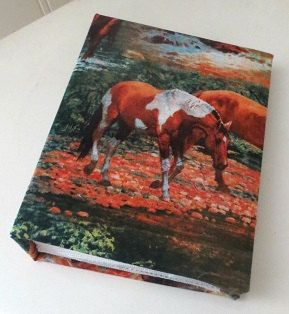 Paint horse photo album - 100 4x6 photos.