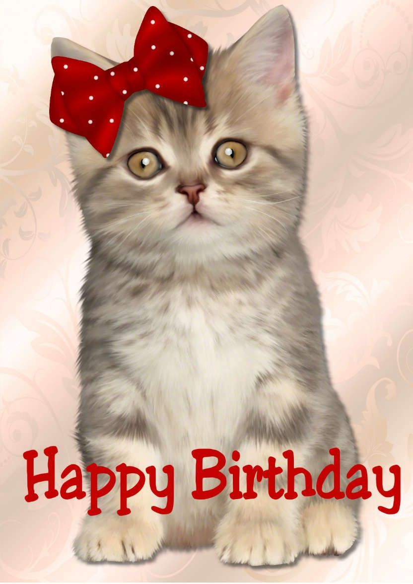 Cute Kitten Happy Birthday in Card Creator Gallery Cat