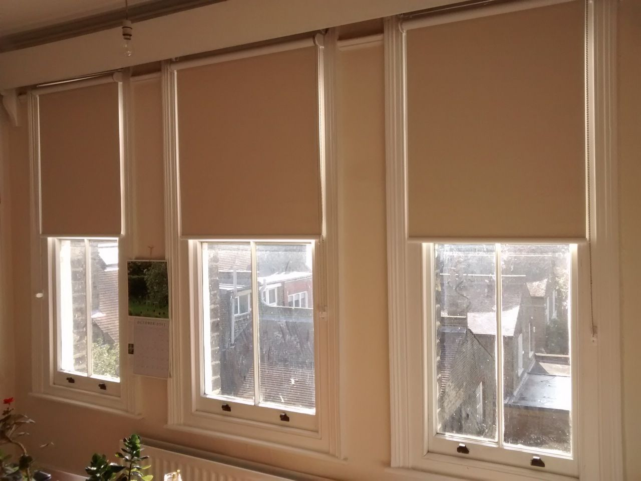 Blackout Roller Blinds With Child Safe Chain Tidy Devices
