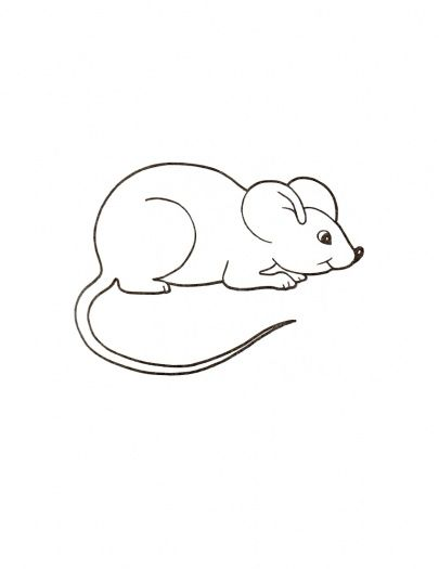 mouse - Coloring Picture Of A Mouse