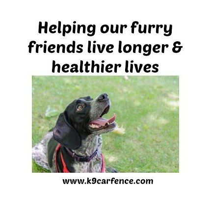 Helping our fury friends live longer & healthier lives. http://buff.ly/2rrL4RT #Dogs #DogSafety #DogsinCars #Traveldogs