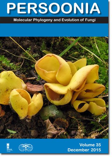 Persoonia Molecular Phylogeny And Evolution Of Fungi Con