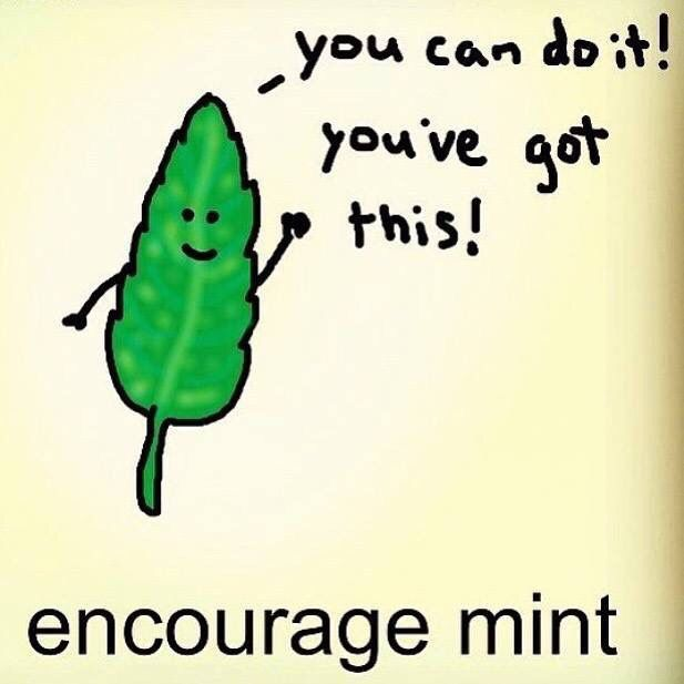 You Can Do It Youve Got This Encourage Mint 33 Pinterest