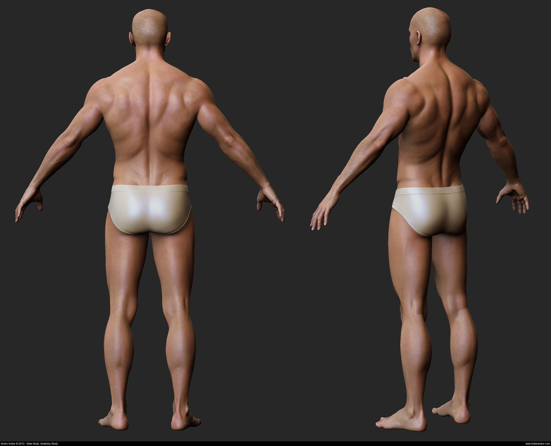 Andor Kollar Realistic Male Body in ZBrush | Andor Kollar - 3D ...