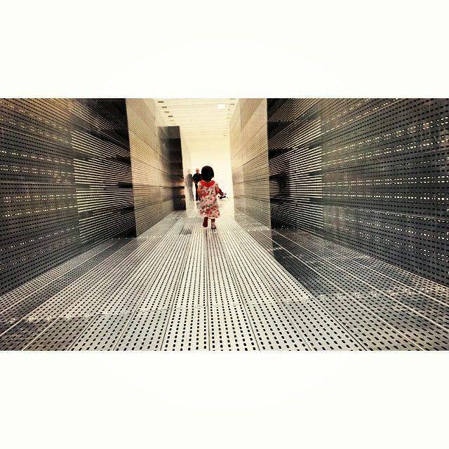 """""""Atravessamento"""" Prolik,Eliane #museuoscarniemeyer #elianeprolik #damateriadomundo"""