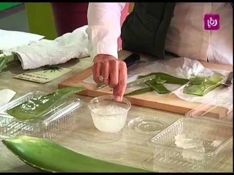 صبار الوفيرا وكيفية استخراج مادة علاجية للجلد م أمل القيمري Hair Treatment Aloe Vera Aloe
