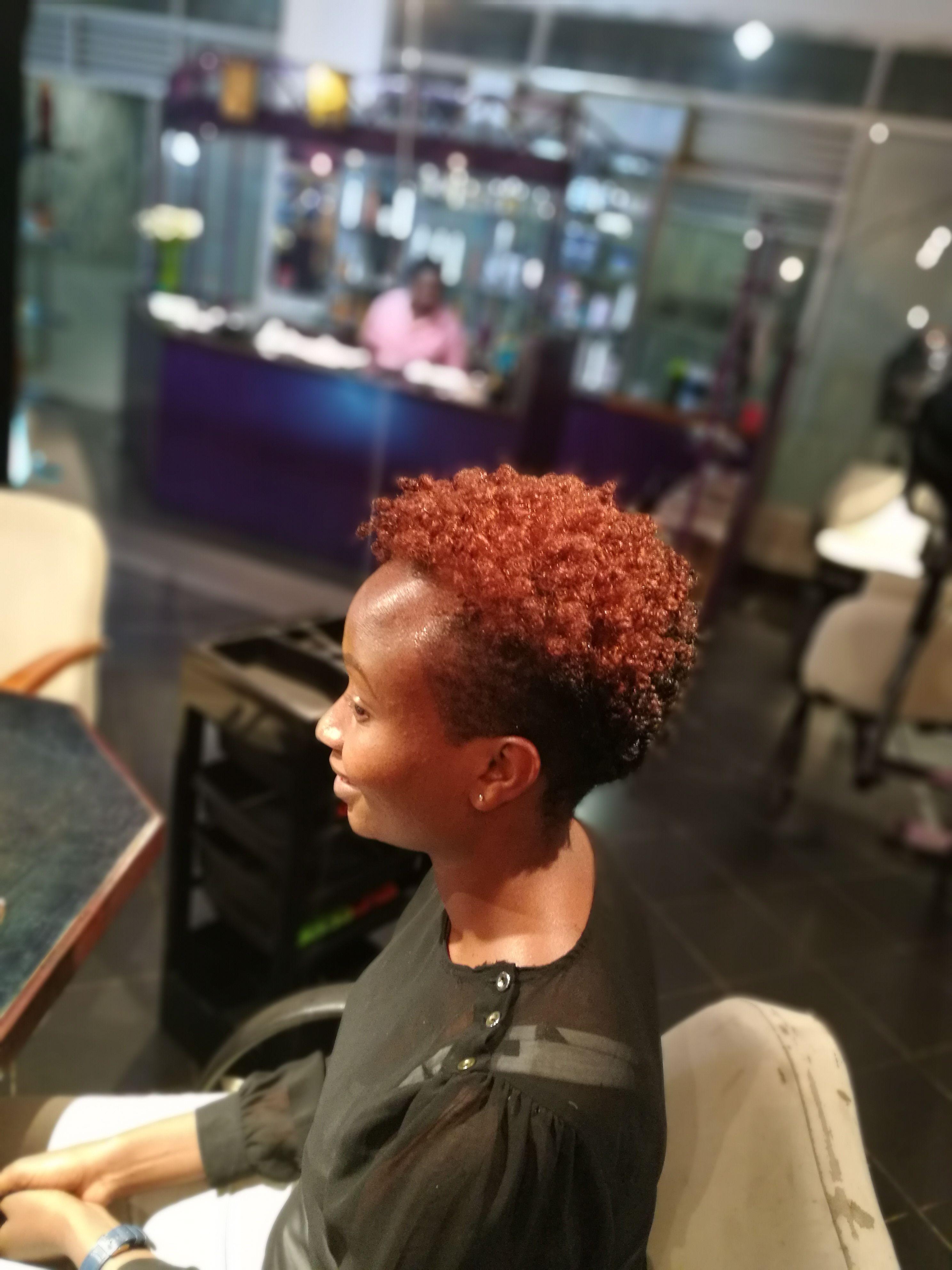 The Hairdresser 254