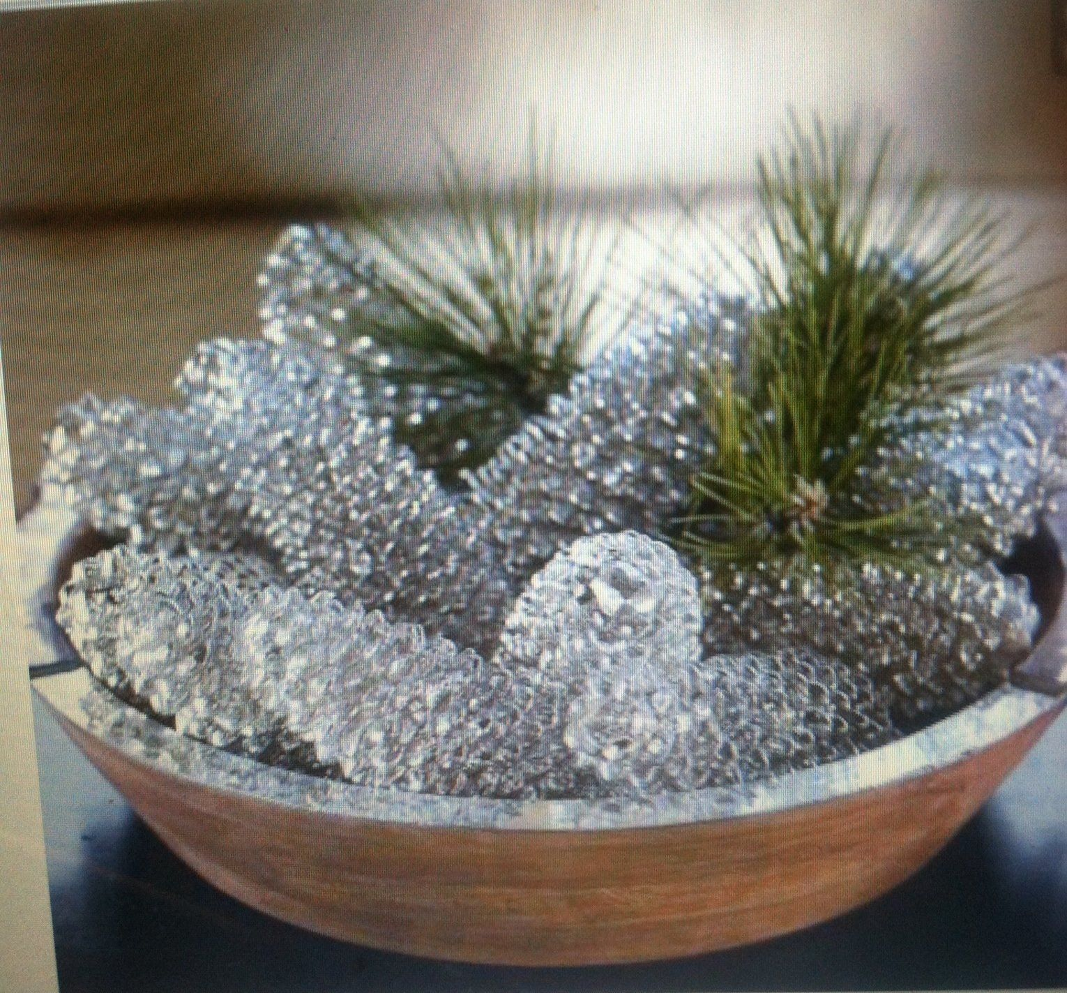 Pinecones sprayed with krylon look glass spray paint for How to paint pine cones for christmas