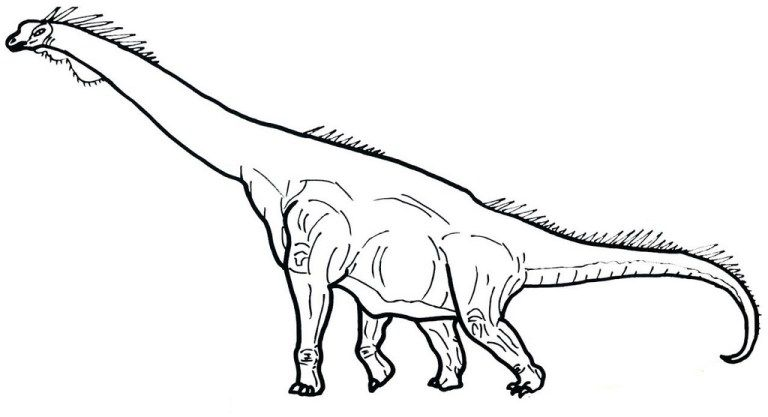 Brachiosaurus Coloring Sheets For Kids Ages 4 Years And Older