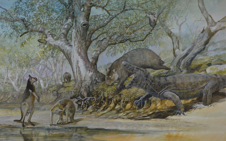 Pleistocene forest in the Darling Downs, Eastern Australia