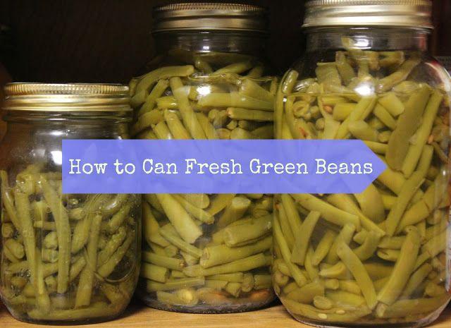 My First Pressure Canning Adventure Fresh Garden Green Beans Pressure Cooking Green Beans