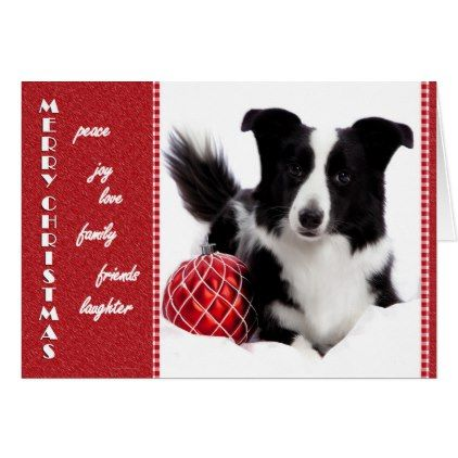 Border Collie Christmas Card - christmas cards merry xmas family