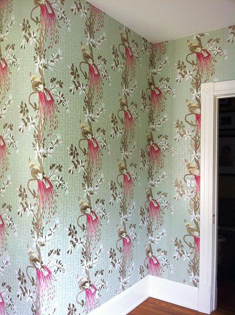 Paradiso wallpaper by nina campbell distributed by osborne - Nina campbell paradiso wallpaper ...