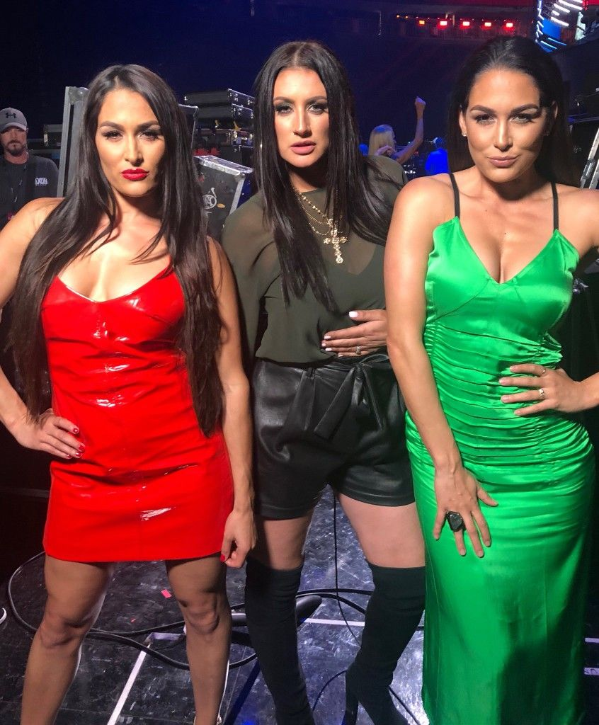 Pin By Dawn Hoig On Woman S Wrestling Fitness Bella Twins Nikki Bella Nikki And Brie Bella