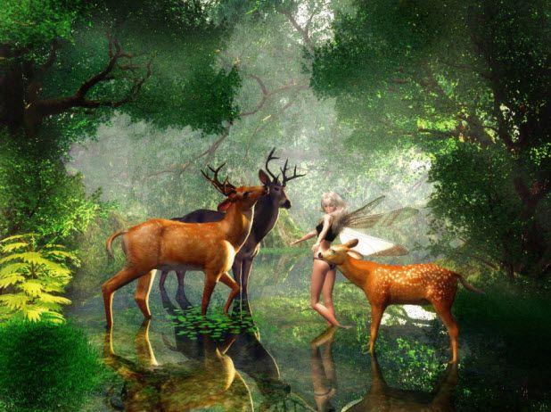 World Most Beautiful Animal Desktop Wallpaper For Widescreen Computer Most Beautiful Animals Animals Beautiful Animals