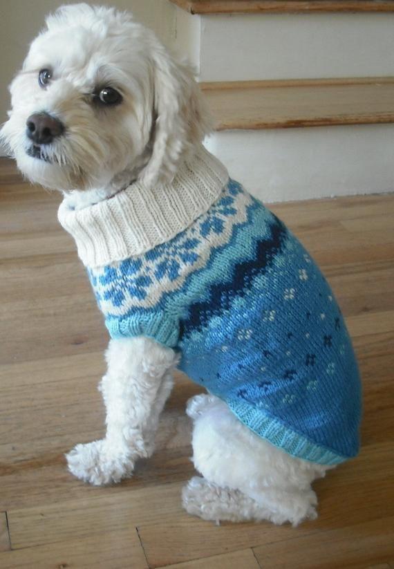 Items similar to blue dog sweater on Etsy
