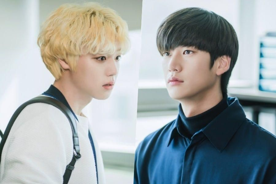 """Park Ji Hoon And Na In Woo Are Brothers With A Love-Hate Relationship In """"At A Distance Spring Is Green"""""""