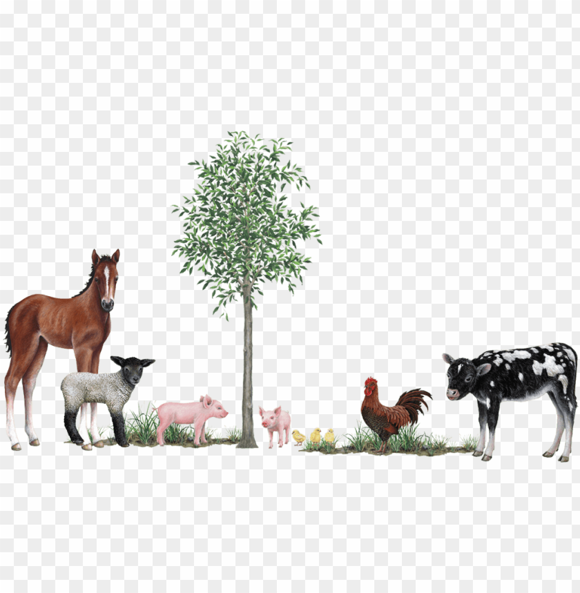 Farm Animals Collection Wall Decals Stickers 3d Wall Stickers Farm Animals Png Image With Transparent Background Png Free Png Images Farm Stickers Wall Decals And Stickers Free Png