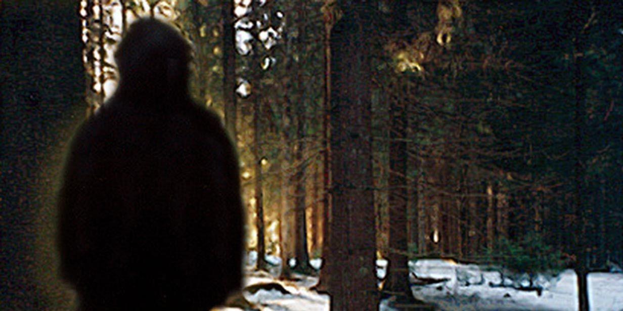 Is Bigfoot Real? Emerging Scientific Evidence